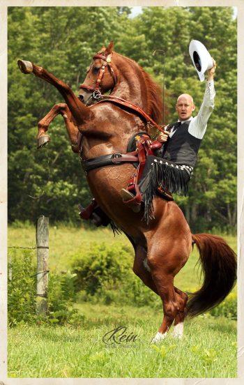 cowboy-rear